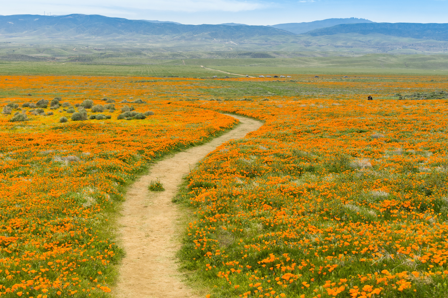underrated-natural-wonders-in-the-united-states-california.jpg