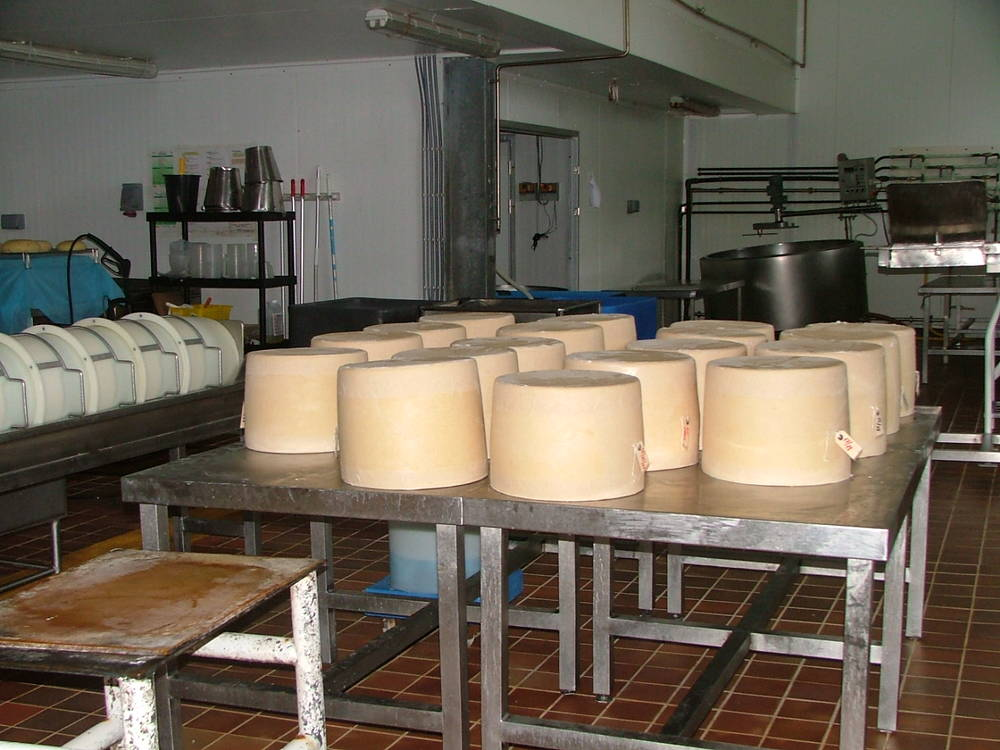 Isle of Mull Cheese.JPG